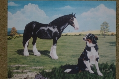 Shire and Collie (I of W) acrylic 10 x 12